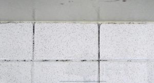 How-To-Get-Rid-Of-Mold-On tiles