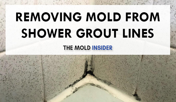 How To Remove Black Mold in Shower Grout